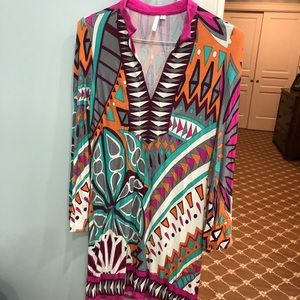 Dresses & Skirts - Envi brand dress in a size L but it fits as a M